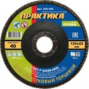 Круг лепестковый торцевой ПРАКТИКА 125х22мм №40 (10)